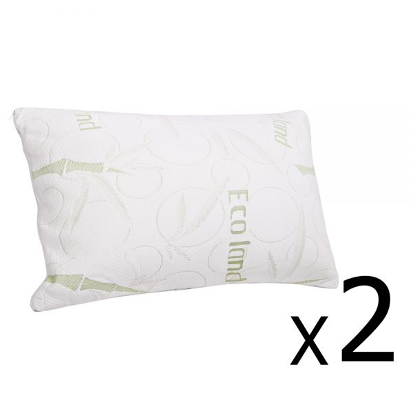 BAM-SHED-PILLOWX2-00_2.jpg